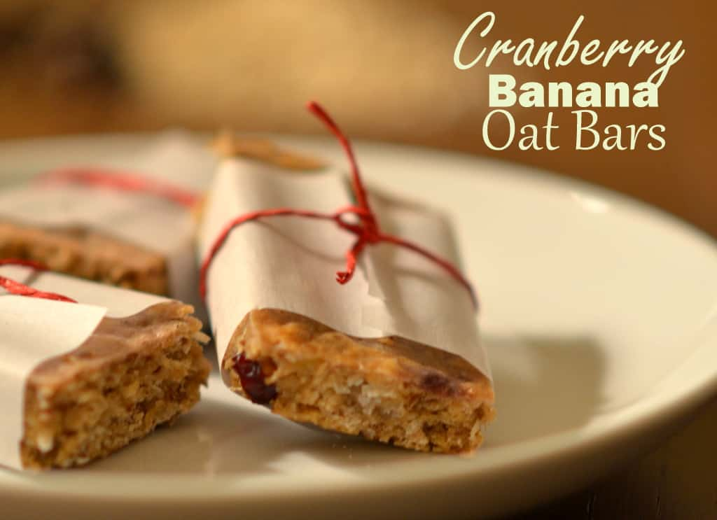 Cranberry Banana Oat Bars
