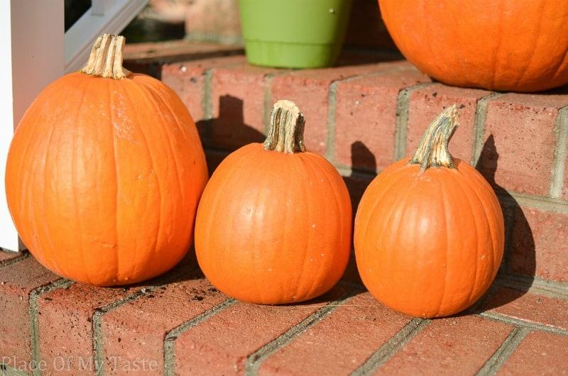 Painted Pumpkins (1 of 26)