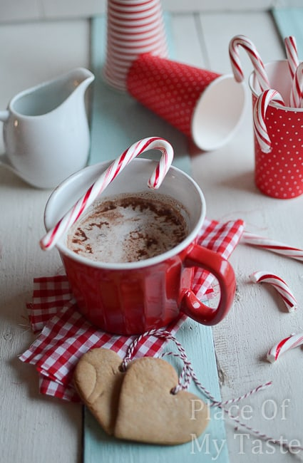 Peppermint+Hot+Chocolate+@placeofmytaste.com+6+of+16