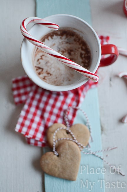 Peppermint+Hot+Chocolate+@placeofmytaste.com+8+of+161