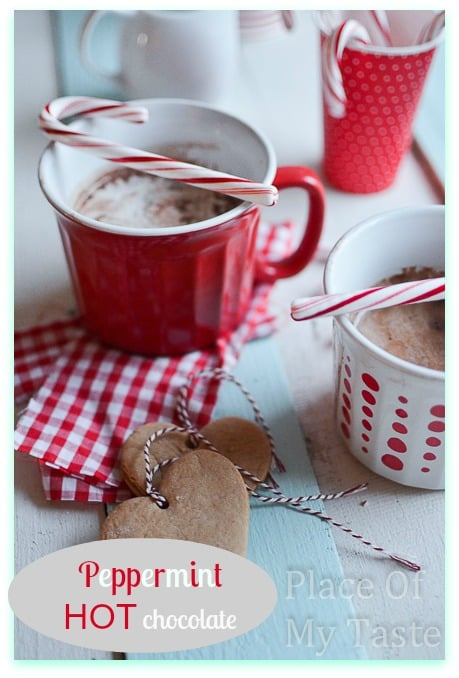 Peppermint+Hot.+Chocolate+@placeofmytaste.com+15+of+16