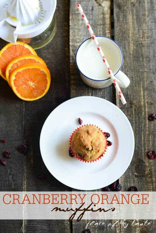 Cranberry Orange Muffin by Place Of My Taste