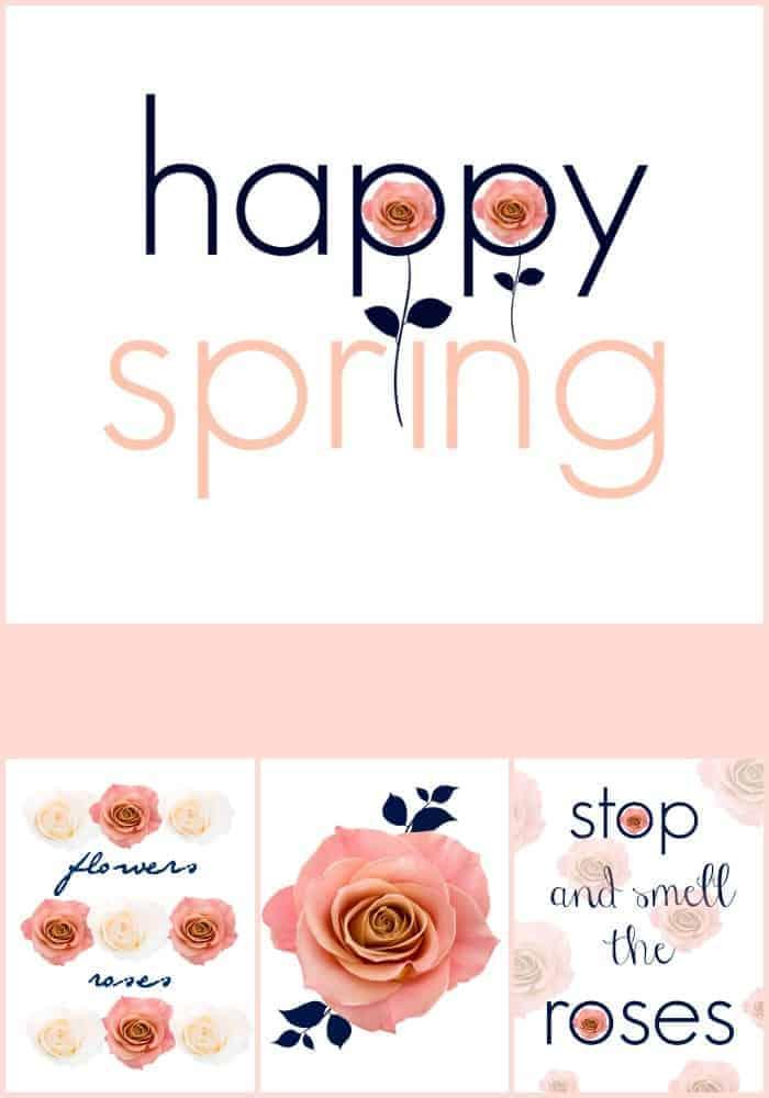 Spring p