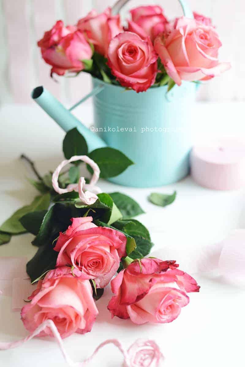 Roses -Web3