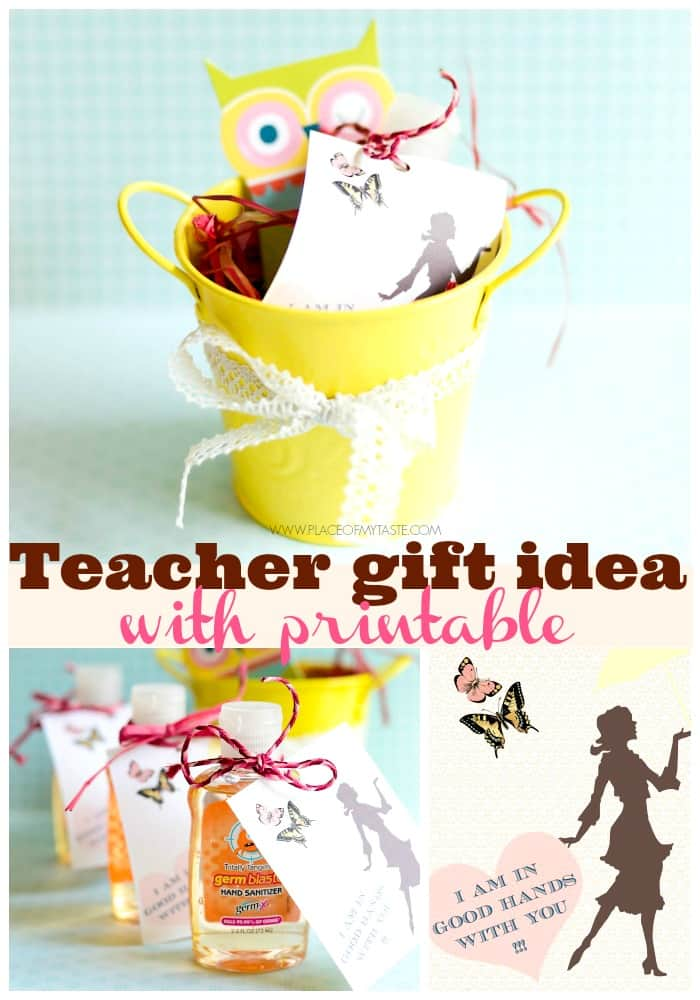 my idea of a good teacher While flowers are suitable for many other occasions, for an end of the year farewell party they are not such a great idea as a good bye gift for the teacher, unless they are one of the many small gifts that make up the complete package.