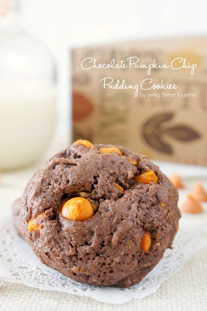 Chocolate Pumpkin Chip Pudding Cookies