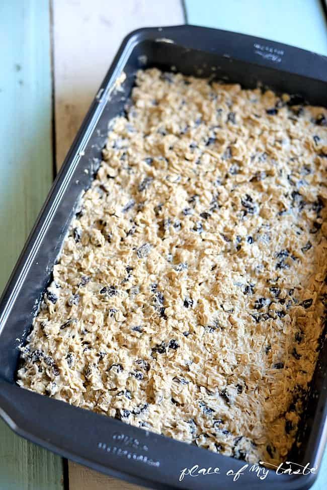 Oatmeal Raisin Snack Bar_-3
