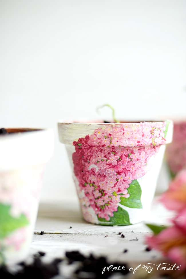 Decoupaged Terra Cotta Pots-10
