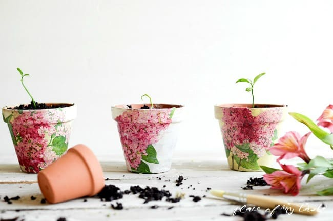 Decoupaged Terra Cotta Pots-9