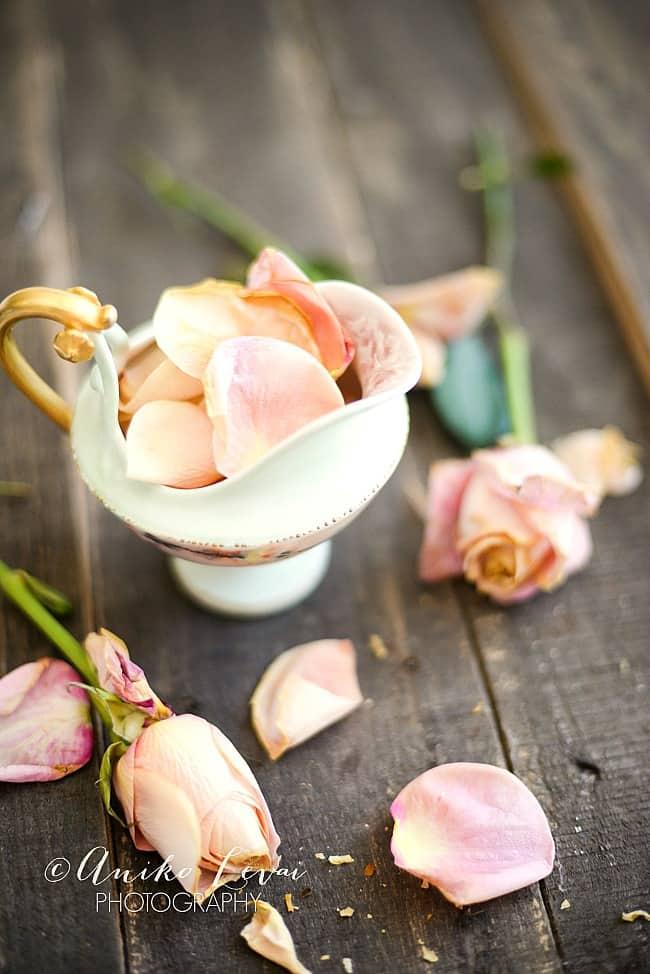 Pretty Dried roses 4