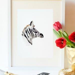Zebra display
