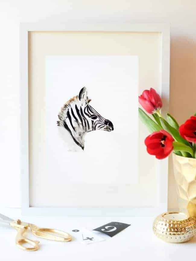 Zebra display