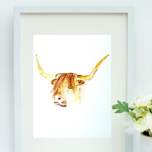 highland cow-display