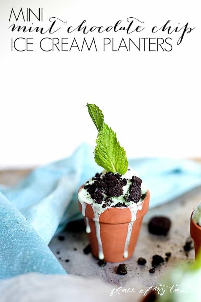 Mini mint chocolate chip ice cream planters