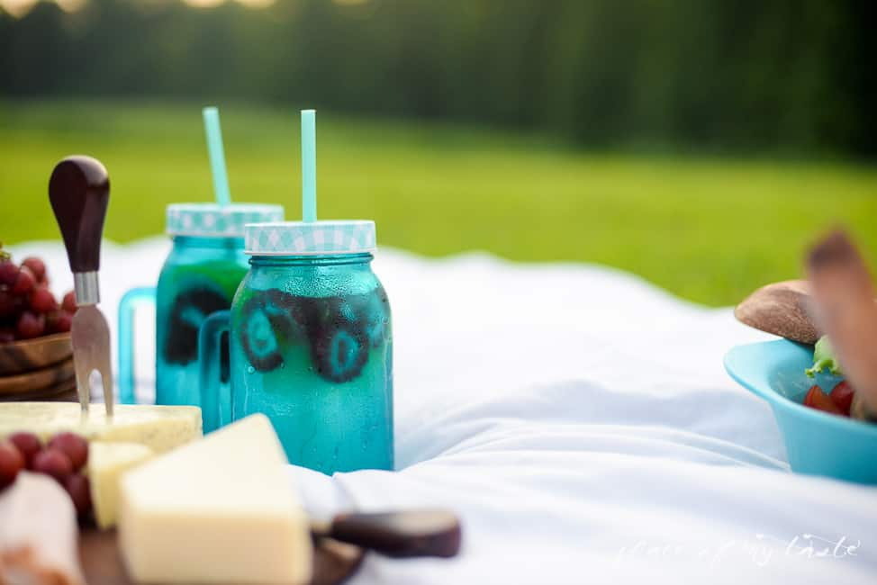 5 TIPS FOR THE PERFECT PICNIC-11