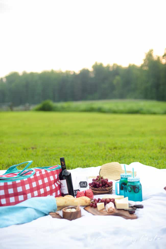 5 TIPS FOR THE PERFECT PICNIC-13