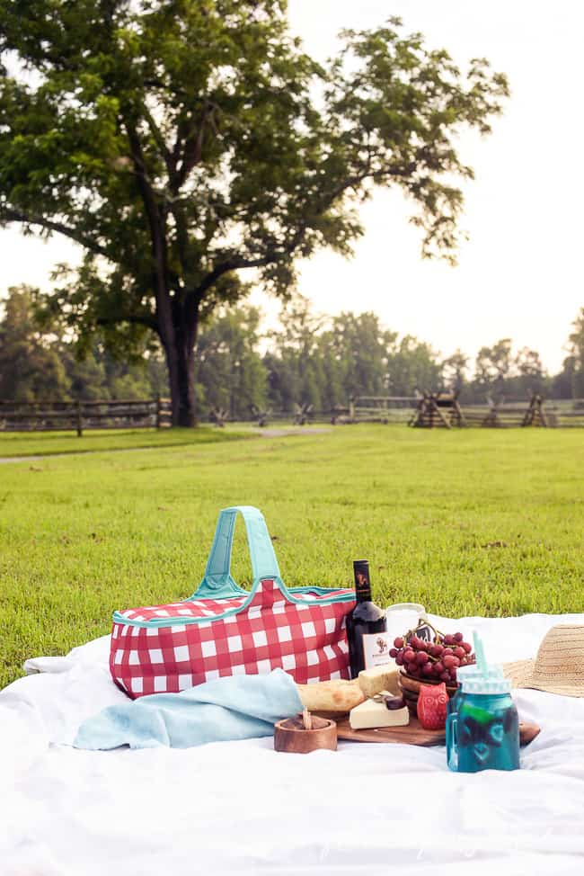 PERFECT PICNIC { and GIVEAWAY }