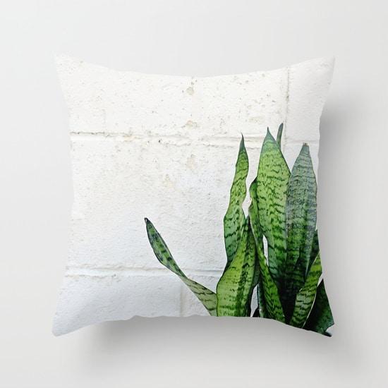snake plant pillow