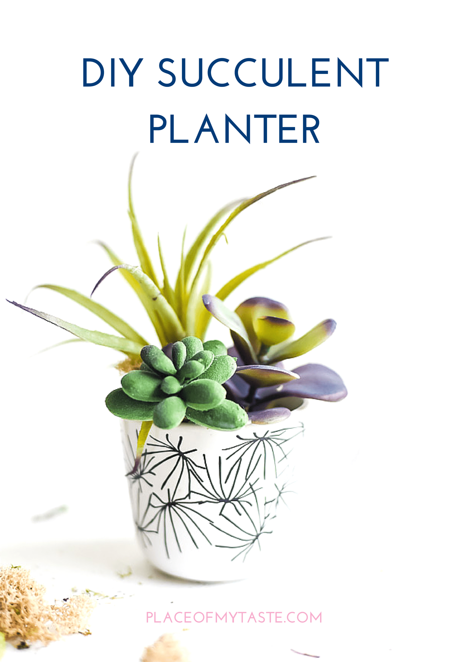 DIY SUCCULENT PLANTER (1)