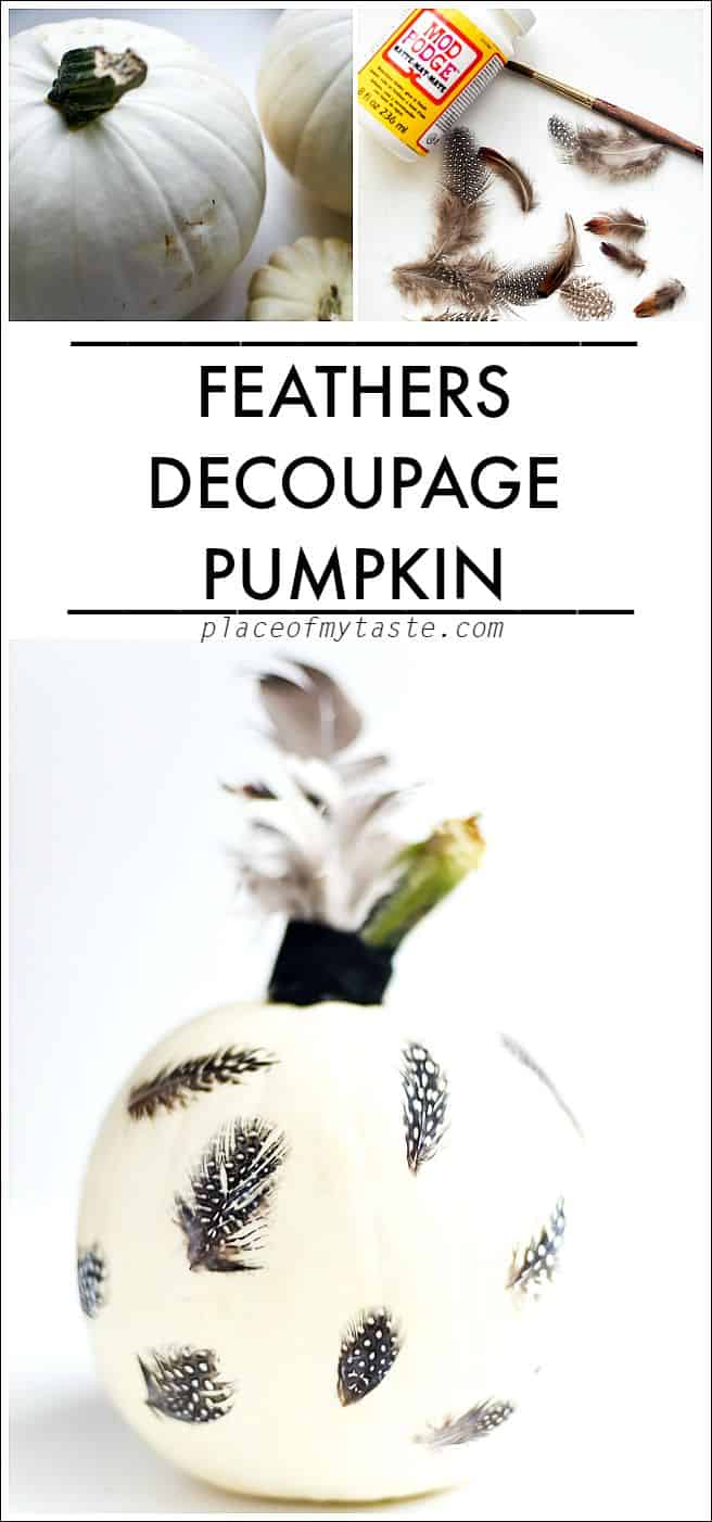 FEATHERS DECOUPAGE PUMPKINS