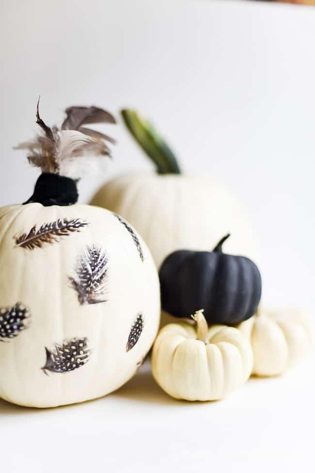 Feather Decoupage Pumpkin (10 of 11)