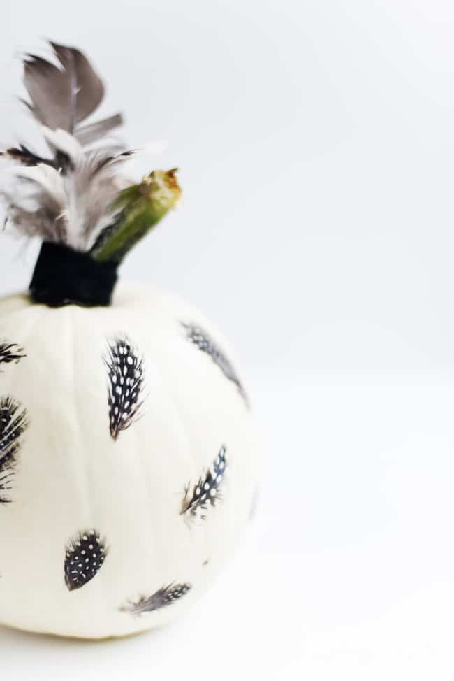 Feather Decoupage Pumpkin (7 of 11)
