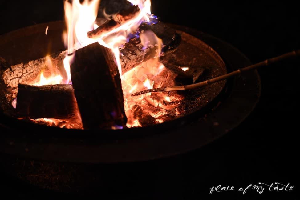 Bonfire (16 of 17)