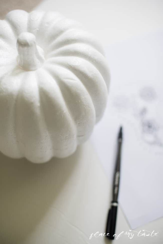 henna pumpkin (1 of 10)