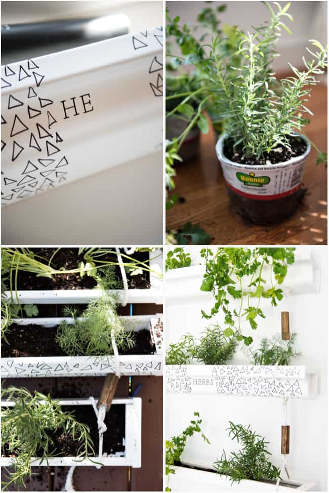 gutter hanging planter