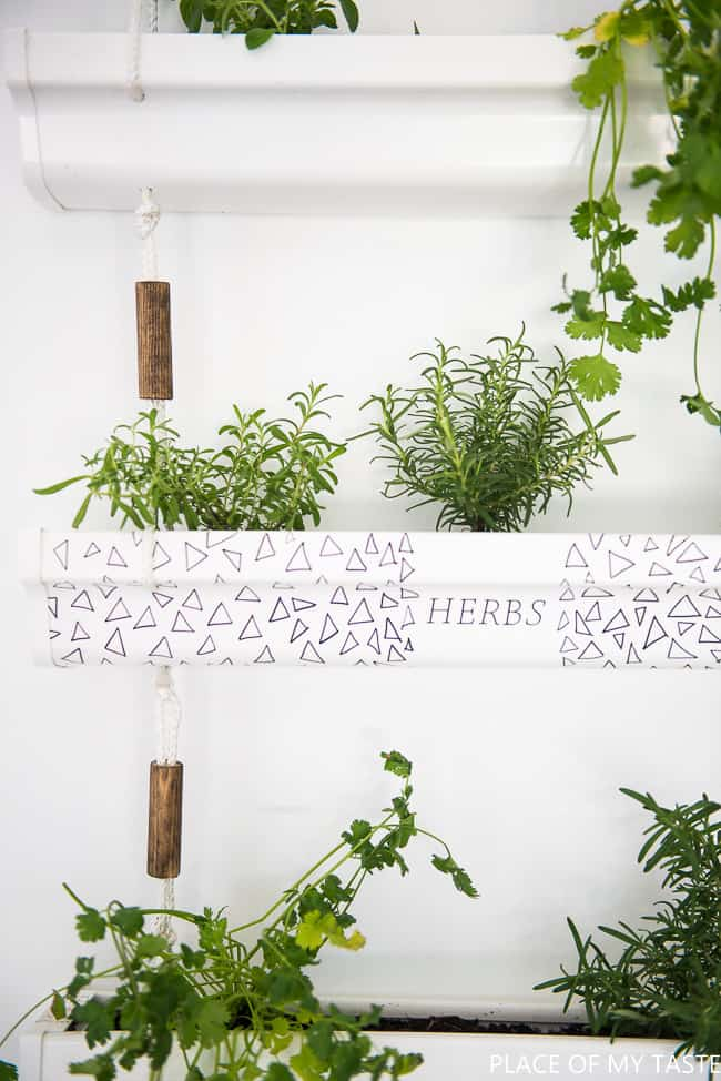 DIY hanging herb planter (3 of 10)