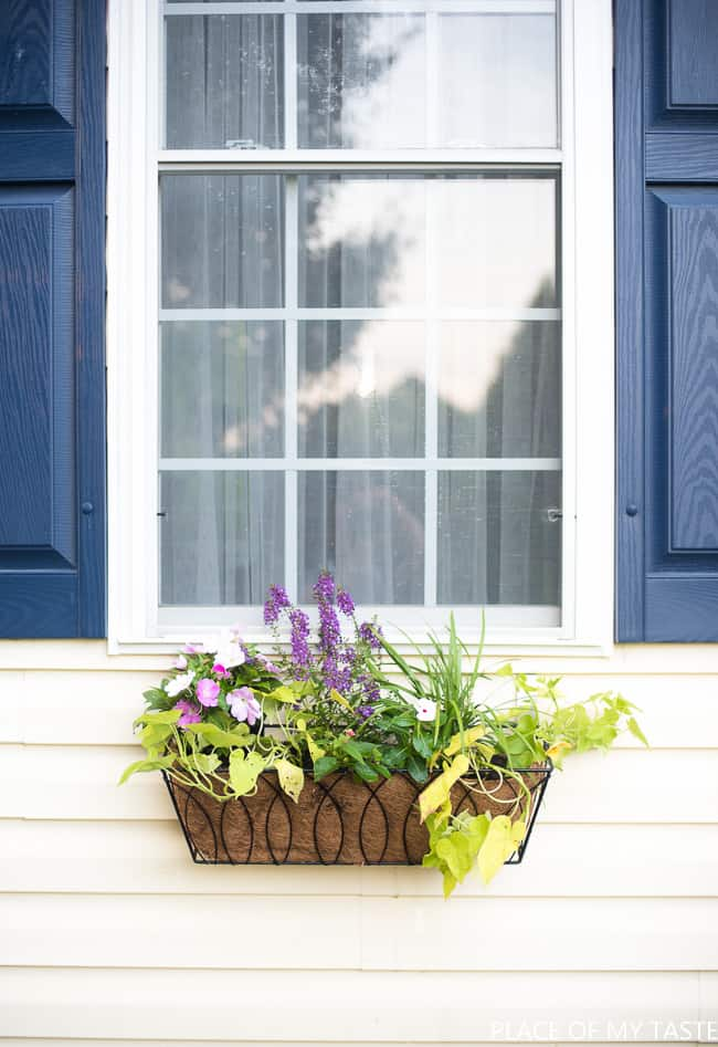 WINDOW FLOWER BASKET ON VINYL SIDING