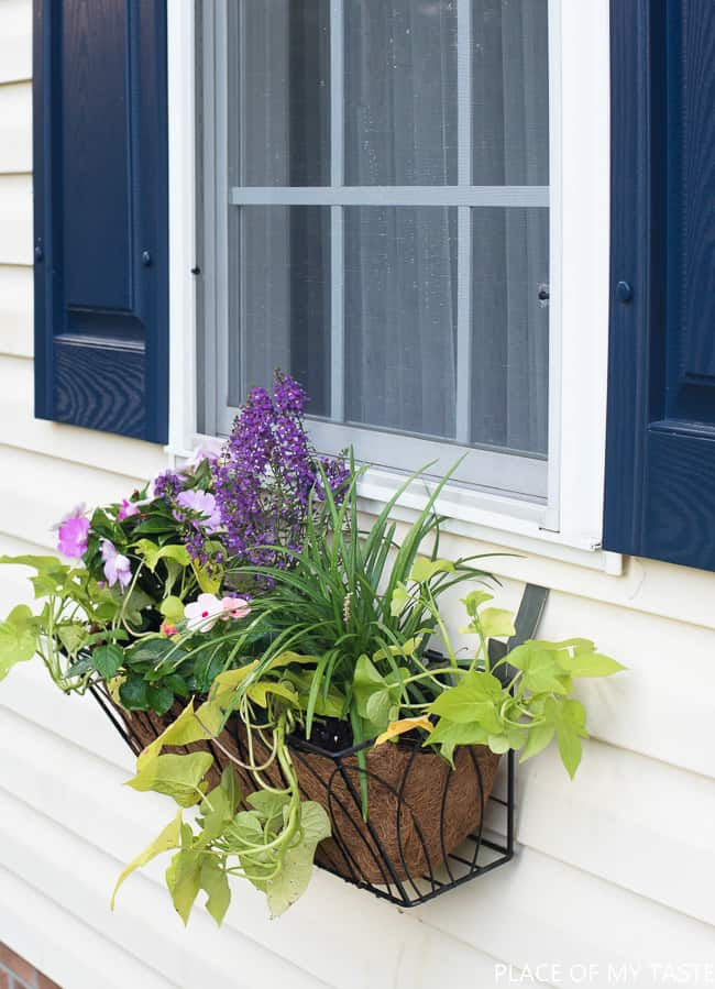 Window Flower Basket On Vinyl Siding Place Of My Taste