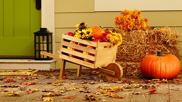 DIH_16_RusticWheelbarrow_Beauty_Edited