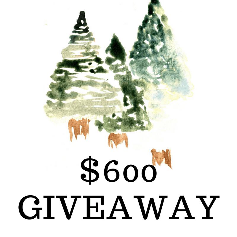 600giveaway