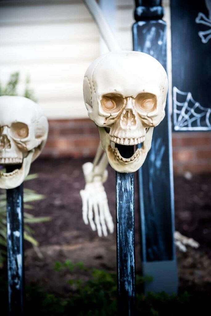 Skulls on spikes make front yard spooky for halloween!