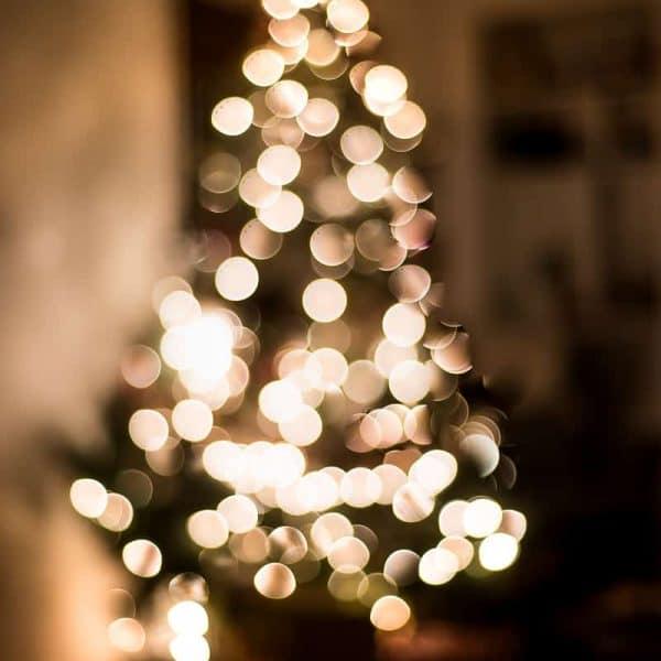 NIGHT LIGHTS CHRISTMAS TOUR