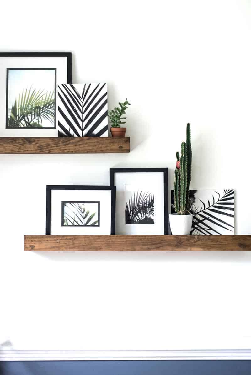 FREE palm printable photos