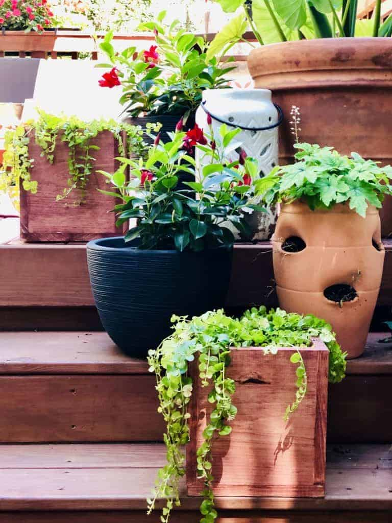 DIY WOOD PLANTER