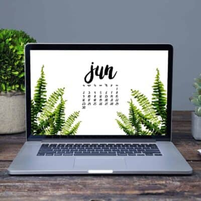 FREE DESKTOP SCREENSAVER – JUNE